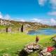 Phúc lợi thân phận khi định cư Ireland